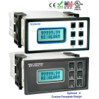 Model DI-802XAT and DI-802XAE Programmable Digital Meter Controllers